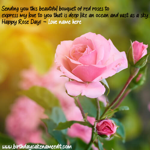 Happy Rose Day Greeting With Quotes and Name